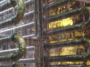 Algues dans l'eau de refroidissement